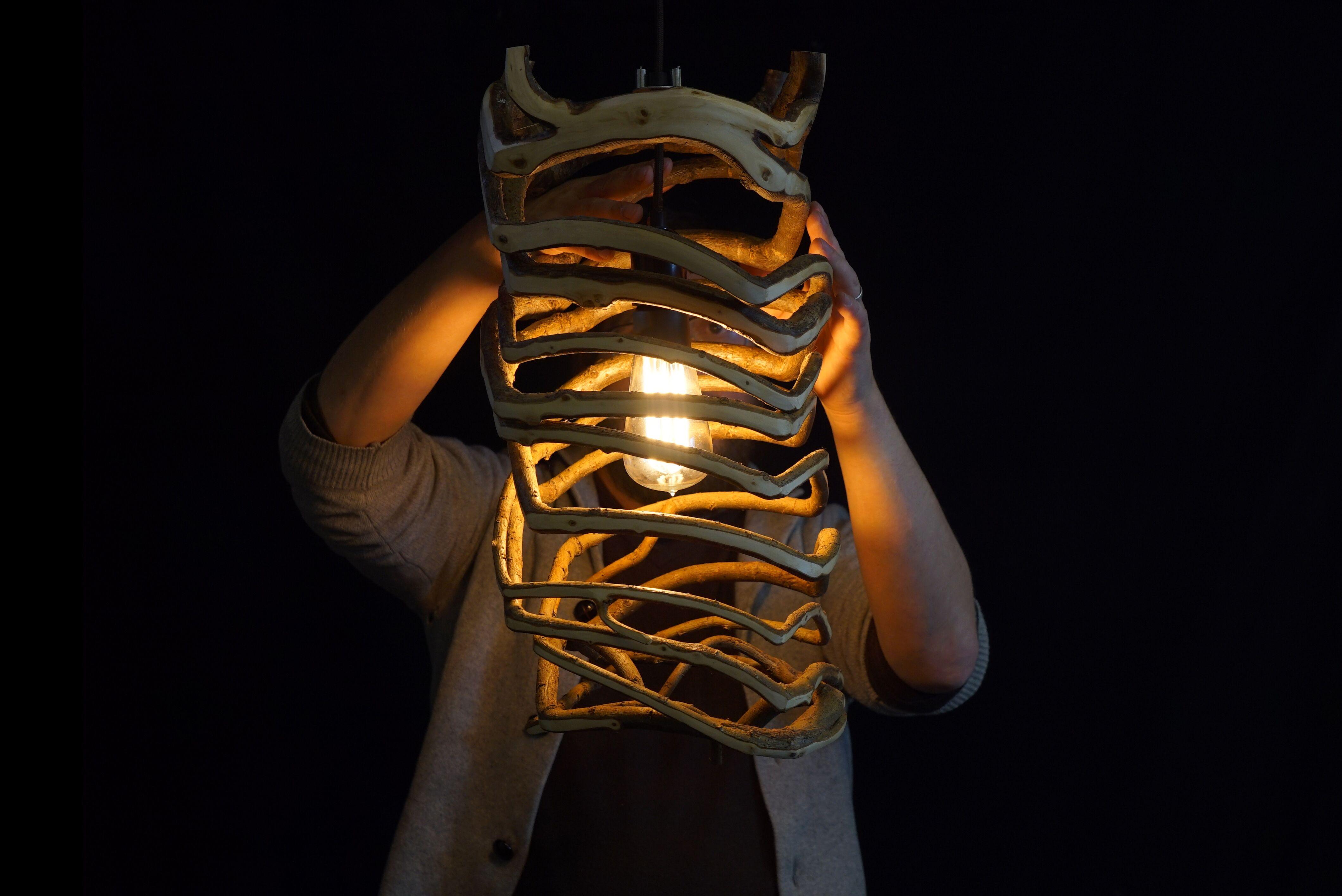 fullgrown lampa